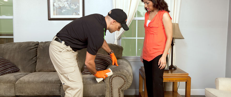 Dearborn Heights, MI carpet upholstery cleaning